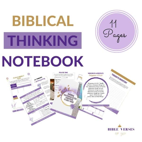 Try out Biblical Notebook that helps you get closer to God and read the Bible!