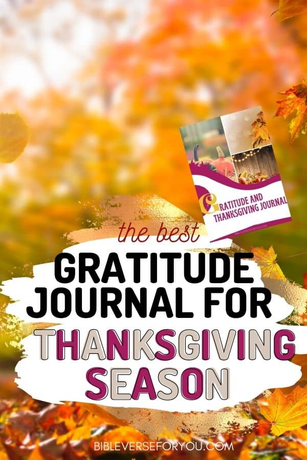 Need a better attitude of Gratitude? Try our Gratitude Journal prompts to change your life in a positive way.