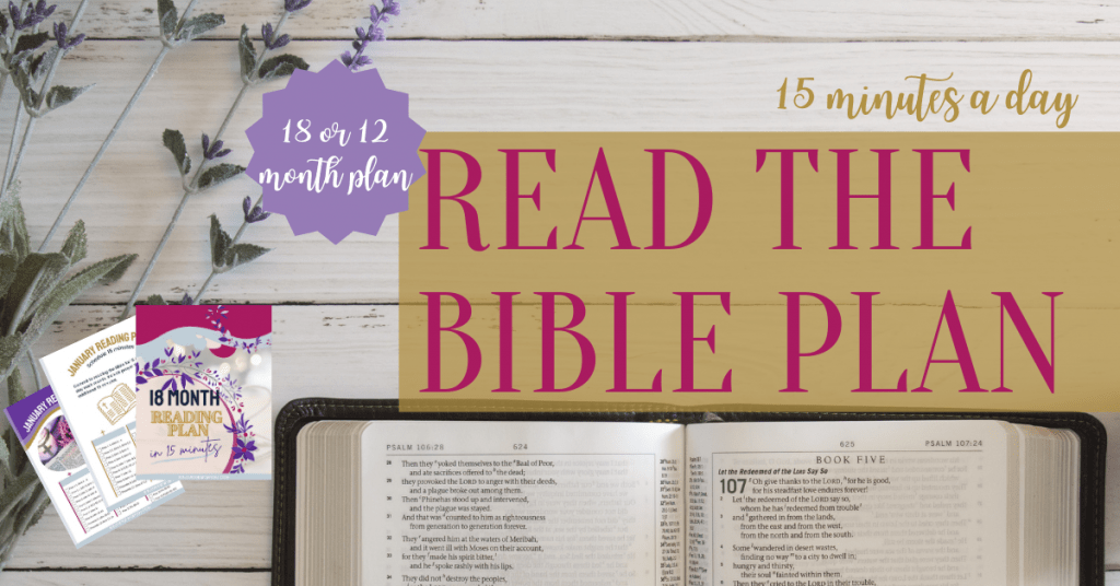 Try our Read the Bible Plan, in just 15 minutes a day, you'll read through the New Testament twice and Old Testament once.