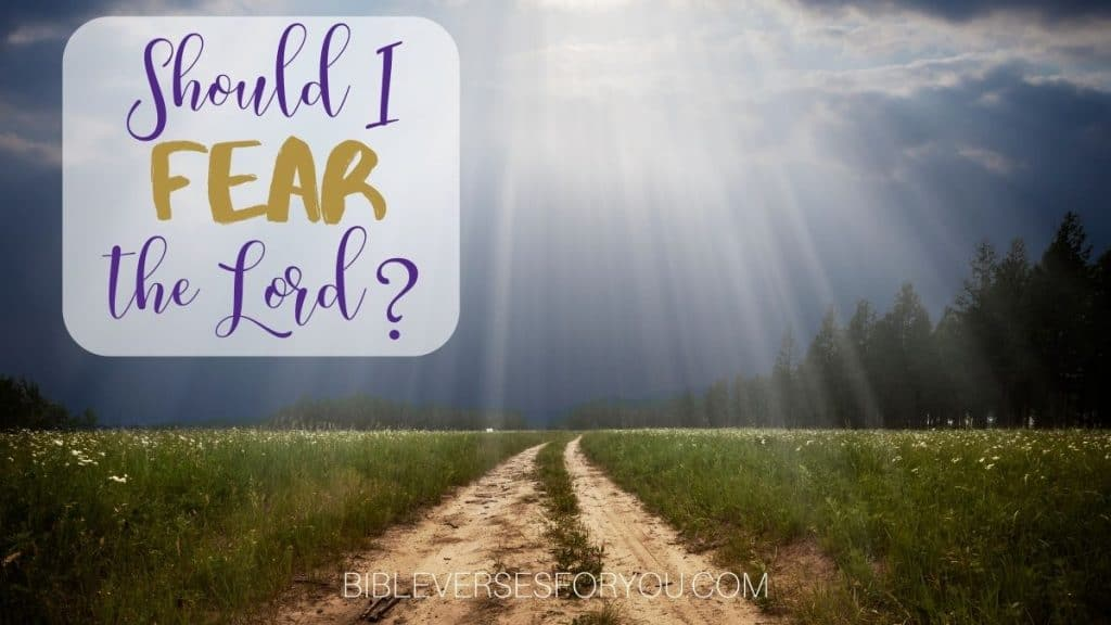 Should I fear the Lord? The Bible tells us what to fear, and it's not men.